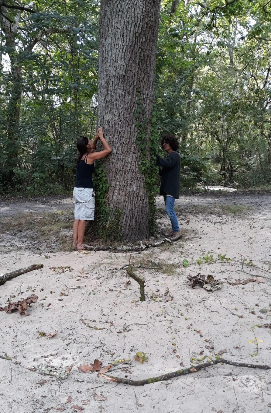 bain de nature benedicte hue et l arbre et moi le teich